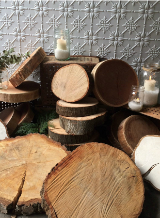 Wood Slices & Logs