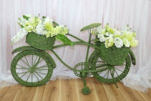 Green Moss Bicycle