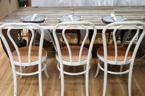 Rustic Bentwood Chairs