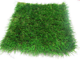 Artificial Grass 54cm x 54cm