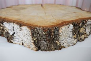 Wood Tree Discs - Rough Birch