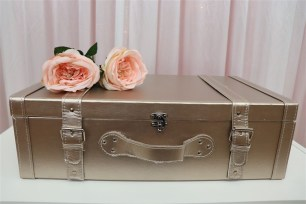 Vintage Suitcases - Metallic