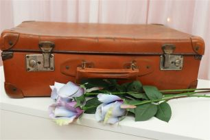 Vintage Suitcases - Burnt Orange